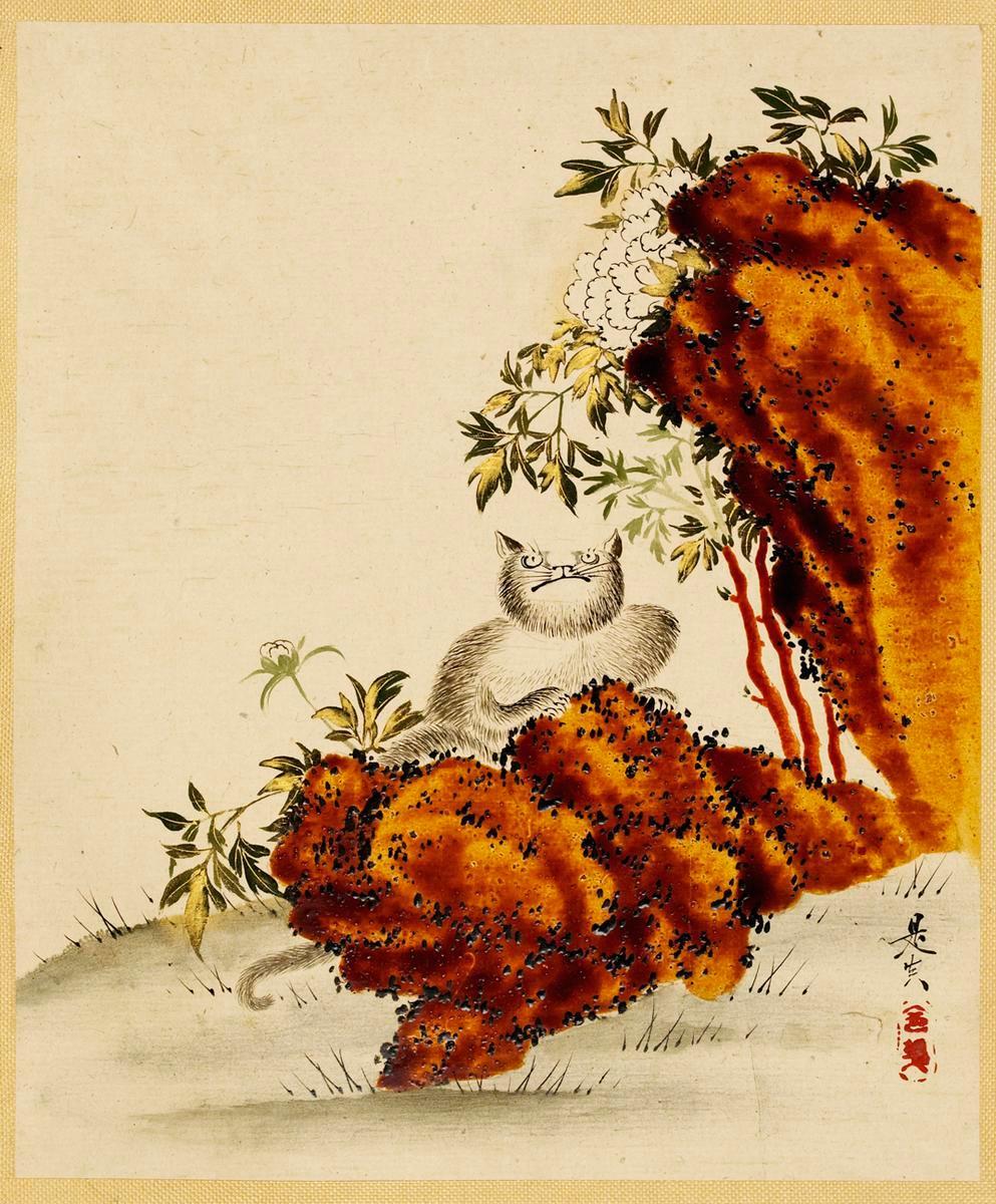 Naughty Cat, Tree, Peony, and Rocks